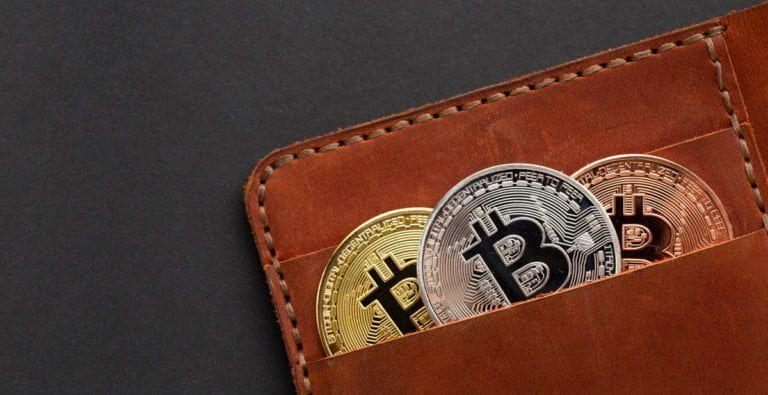 welche arten von bitcoin wallets gibt es