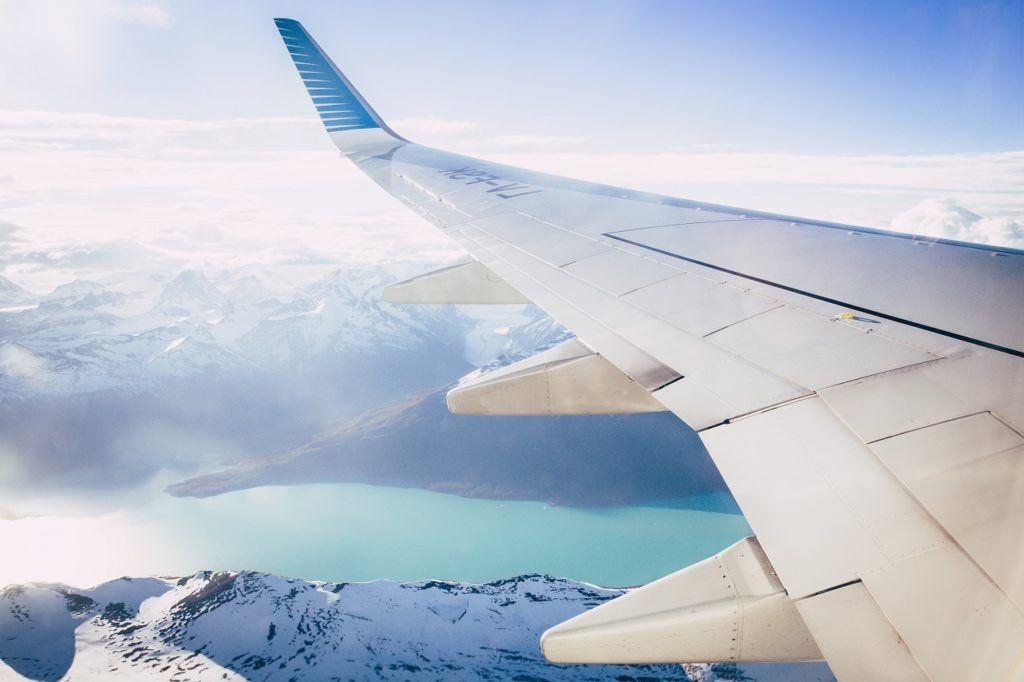 Fly - vinge - landskap - illustrasjon