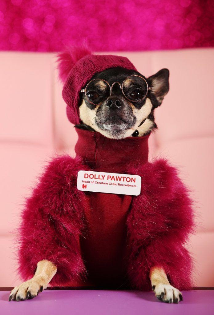 Hotels.com - DollyPawton - VIP - CreatureCritic