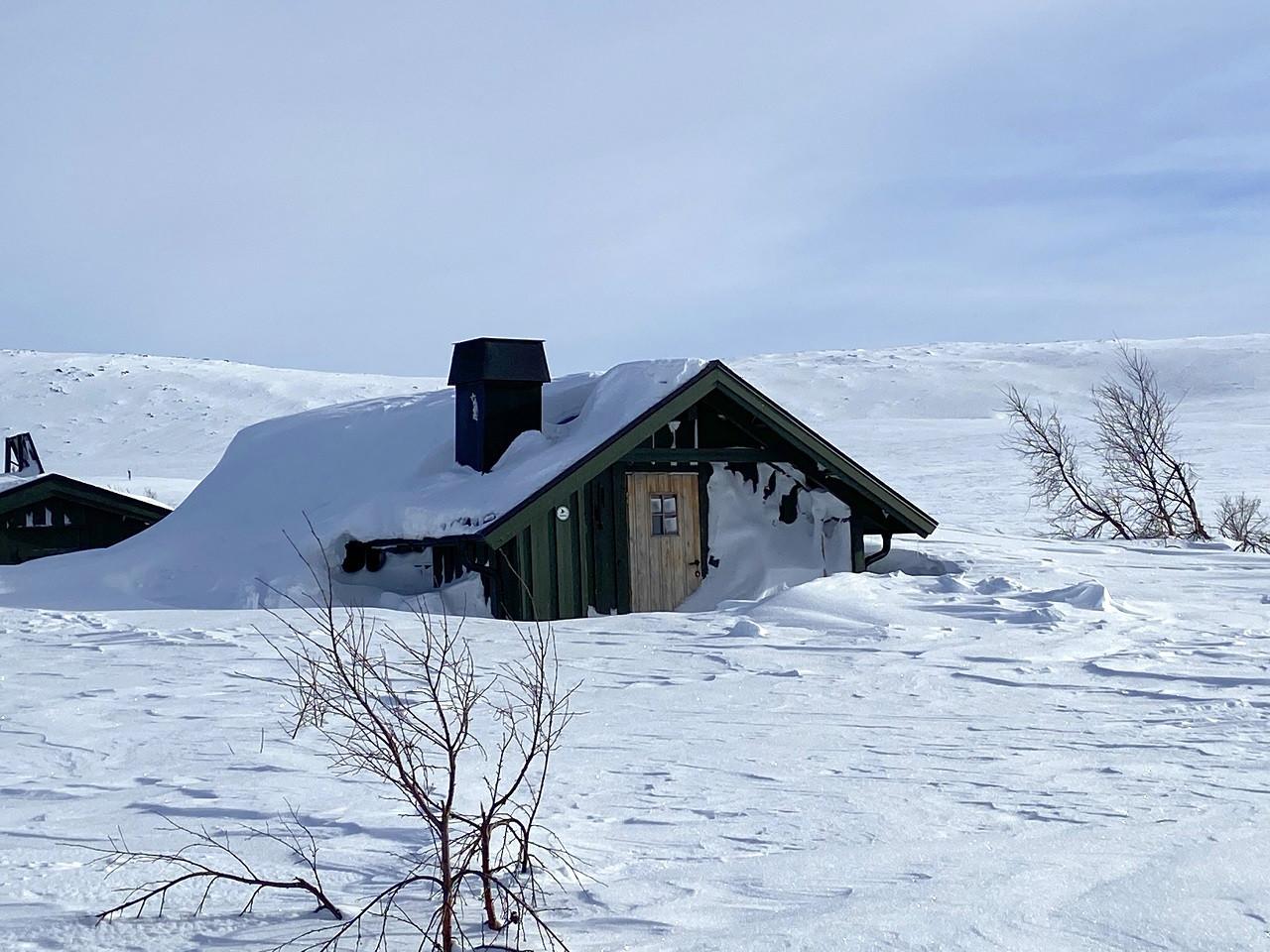 Villsjøhytta - Rendalen - Hedmark - Innlandet - Statskog