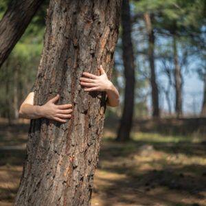 Τι σημαίνει περιβαλλοντική στάση και συμπεριφορά;