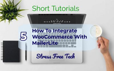 How to integrate WooCommerce and MailerLite on your website