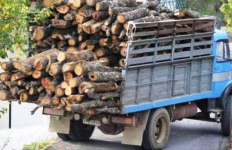 Σύλληψη 43χρονου για παράνομη μεταφορά σχεδόν 19 τόνων ξυλείας στο λιμάνι της Κέρκυρας